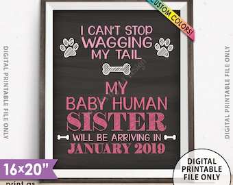 """Gender Reveal Dog Pregnancy Announcement, Mom & Dad are getting me a Human SISTER, It's a Girl Chalkboard Style PRINTABLE 8x10/16x20"""" Sign"""
