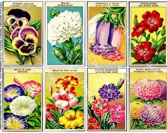 Antique French Seed Packs, Digital Sheet, Vintage Flower Seed Packets, Garden Decoration, Gardening Shed, Victorian Ephemera Collage, 606