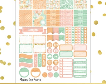 PASTEL FLORAL  PRINTABLE Planner Stickers | Instant Download | Pdf and Jpg Format