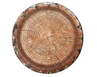 Tree Plates, Lumberjack Party Decorations, 8CT, 10 inch, Paper Plates, Woodland, Outdoors, Hunting, Camping, Wild One, Mens Birthday ideas