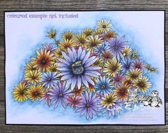 NEW - Daisy Bee, realistic drawing of a bee on a bed of daisies by LeighSBDesigns