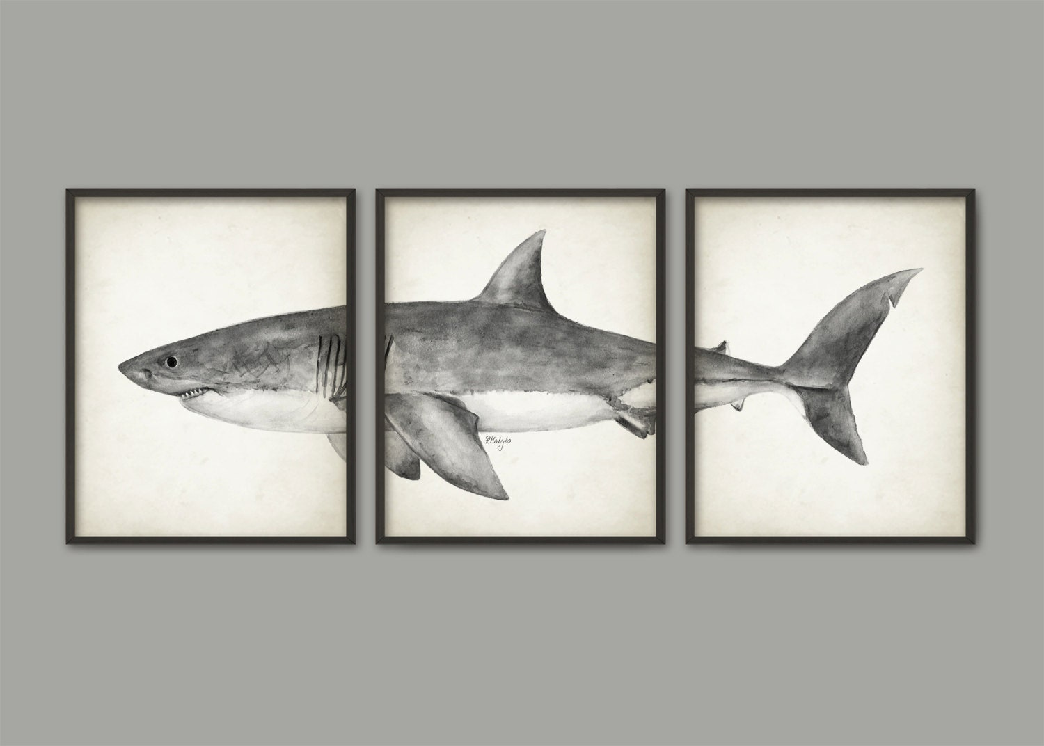 Great white shark watercolor art poster set of 3 shark art for How do sharks use the bathroom