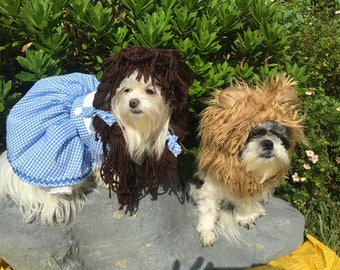 Dorothy/Dorthy Wizard of Oz inspired dog costume