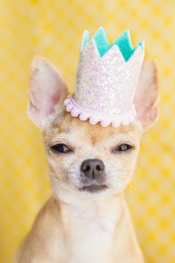 Dog Glitter Crown    Animal Birthday Hat    Dog Party Hat    Dog Crown    Dog Birthday Crown    Pet Party Hat