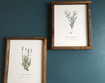 Farmhouse Botanical Print set with barn wood frame 2 prints 10x12 inches