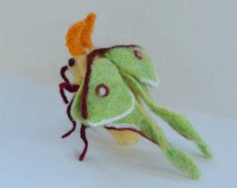 Needle Felted Luna Moth, Luna Moth Sculpture, READY TO SHIP, Needle Felted Insect, Insect Sculpture, Moth Art, Insect Art, Gift