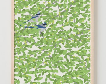 Fine Art Print. Blue Jays in Plum Tree. May 1, 2014.