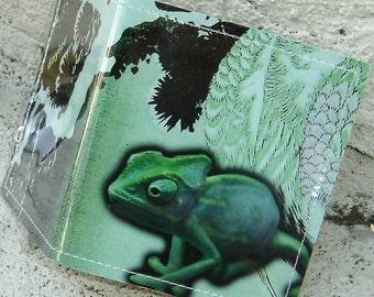 wallet - Chameleon
