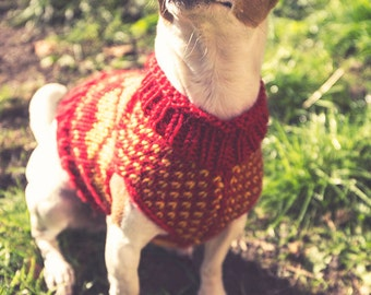 Juno's Hearts - a dog sweater