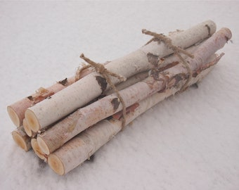 7 WHITE BIRCH LOGS In a FirePlace Bundle - Natural Woodland Decor - Rustic Wedding