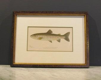 Framed Denton Lithograph