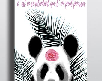 Panda illustration poster
