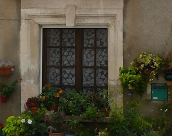 French Window with Flowers