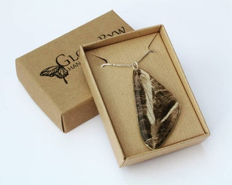 "Large Moth Wing Pendant on an 18"" Sterling Silver Box Chain"