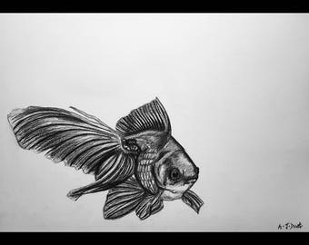 Hand-drawn Goldfish Print