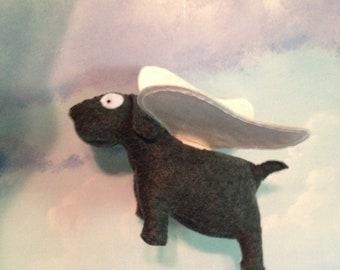 Yerog Drawde the butterflied dog