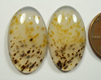MONTANA AGATE, 23.1 x 13.7 mm oval cabochons, unique pattern and color, 18.50 carats gemstone PAIR from Yellowstone River