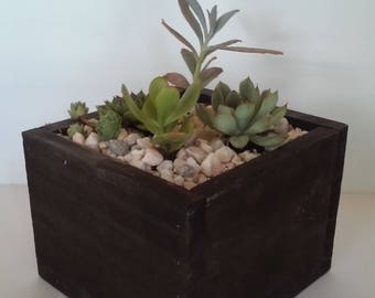 Beautiful Handmade Wood Succulent Planter