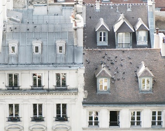 Paris  Photography -  Birds on a Rooftop in Paris, Cream and Grey, Architecture Photography, Neutral French Home Decor, Large Wall Art
