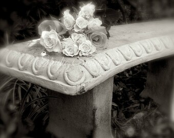 """Black and White Art, Garden Photography, Rose Photograph, Old Bench Photo, Romantic Cottage Farmhouse Art, Home and Garden Print- """"Memories"""""""