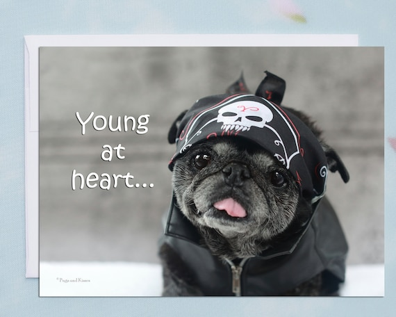 Funny Birthday Card Happy Birthday Card Young At Heart