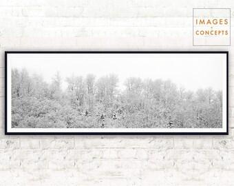 White Panoramic Print ~ Large Wall Art ~ Home Decor ~ Printable Photography ~ Large Printable Art ~ Digital Download ~ White Trees