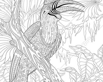 Hornbill Bird. Coloring Pages. Animal coloring book pages for Adults. Instant Download Print