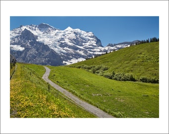 Swiss Alps - View From Jungfraujoch Train - Switzerland - Color Photo Print - Fine Art Photography (SW03)