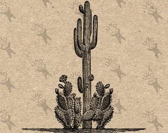 Vintage Grafik Wüste Kaktus Kakteen Wild West Texas Instant Download Bild Digital bedruckbare Clip Art Transfer Sackleinen Eisen auf HQ300dpi