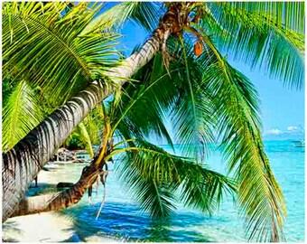 tropical print art, palm tree wall art,  wall art prints