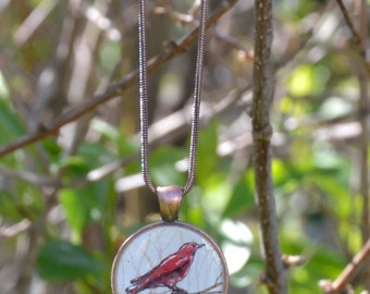 red bird necklace, nature jewelry,