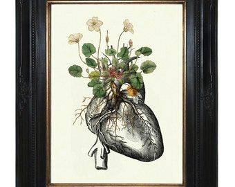 Flowers Art Print growing on Anatomical Heart Art Print Botany Love Valentine's Day Gothic Victorian Steampunk Art Print Botanical