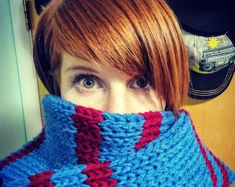 Step in the Stripe Direction - Knit Scarf in Blue and Cranberry