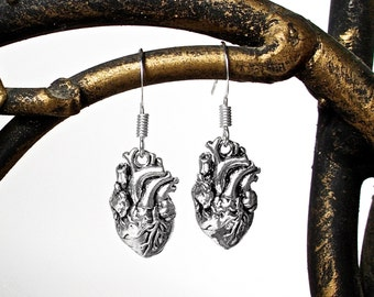 Anatomical Heart Earrings In Silver -  Now Available in an All Sterling Silver Option