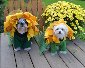 Unique Sunflower Dog Halloween Costume for small-medium breed dogs & Eagle Dog Costume for smaller breed dogs