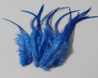 Craft Feathers - Sapphire Blue Craft Feathers qty 12