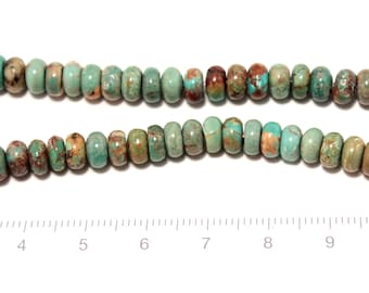 turquoise disk shape beads 1string/G-0064