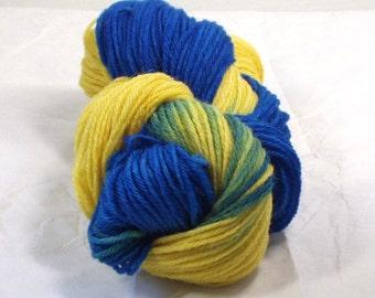 Sky Flower  Merino Wool Yarn Worsted Weight  Superwash Wool  Hand Dyed  Multi Colored Variegated  Lemon Yellow Royal Blue