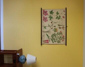 Warming - Balslev Botany Wall Chart – WB18 – Dryas, Crane's-bill, Vervain/Verbena