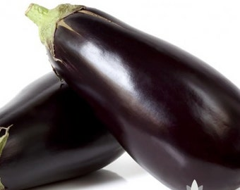 Black Beauty Eggplant Heirloom Seeds - Non-GMO, Open Pollinated, Untreated