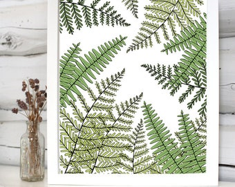 Fern print illustration