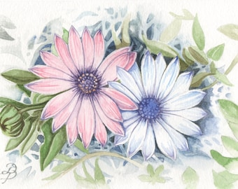 African Daisy, ORIGINAL watercolor painting, FREE shipping