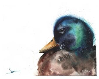 DUCK ART PRINT - mallard duck painting, duck decor, duck wall art, duck gift, duck lover, watercolor duck, duck illustration, duck print
