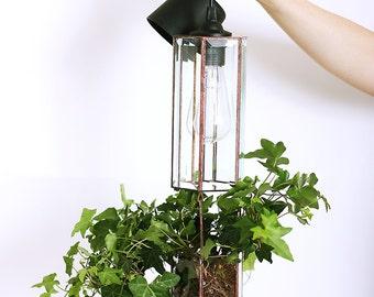 Pendant Light Planter