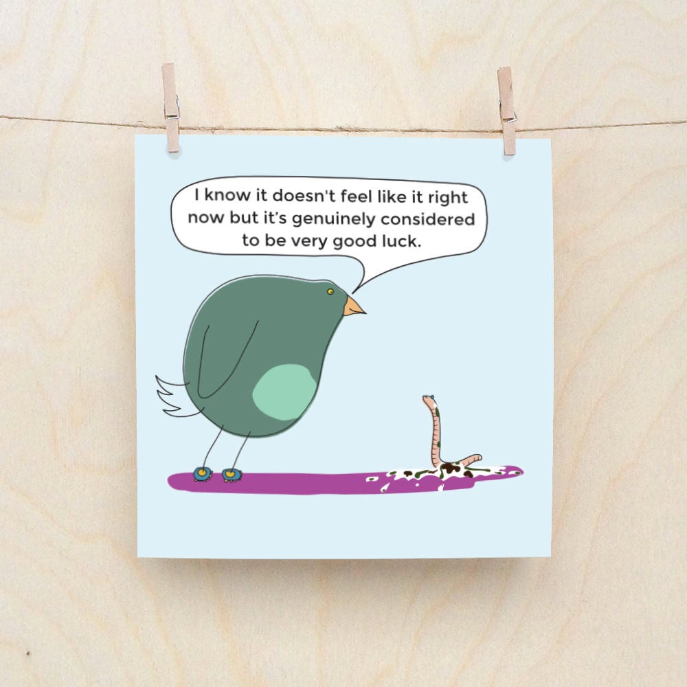 Lucky Bird Poo Cards Funny Greetings Card Funny Good Luck Cards