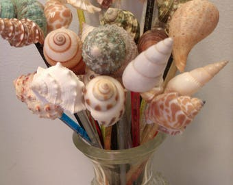 REUSABLE SWIZZLE Sticks 6 Inches Seashell Stirrers Sea Shell Beach Wedding  Spiral Conch Green Snail Drinks Images