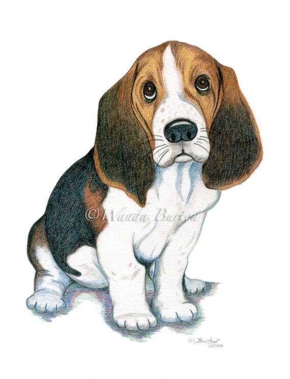 How To Draw A Hound Dog Puppy