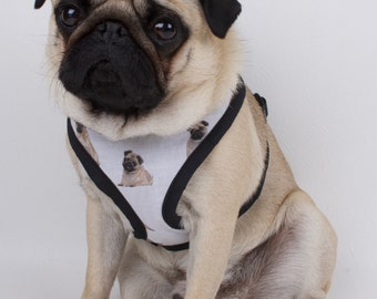 Handmade pet harness made to order pugs