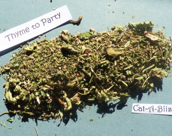 Thyme to Party Catnip