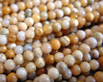 15. Petoskey Fossil 2mm or 3mm Round Bead 16 Inches Strand Stones Beads